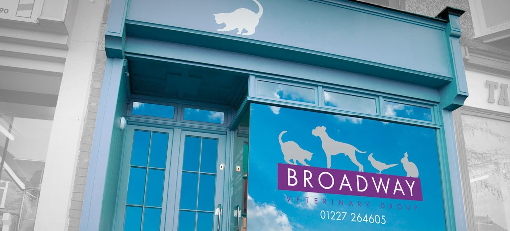 Shopfront design - Broadway Veterinary Group surgery window display